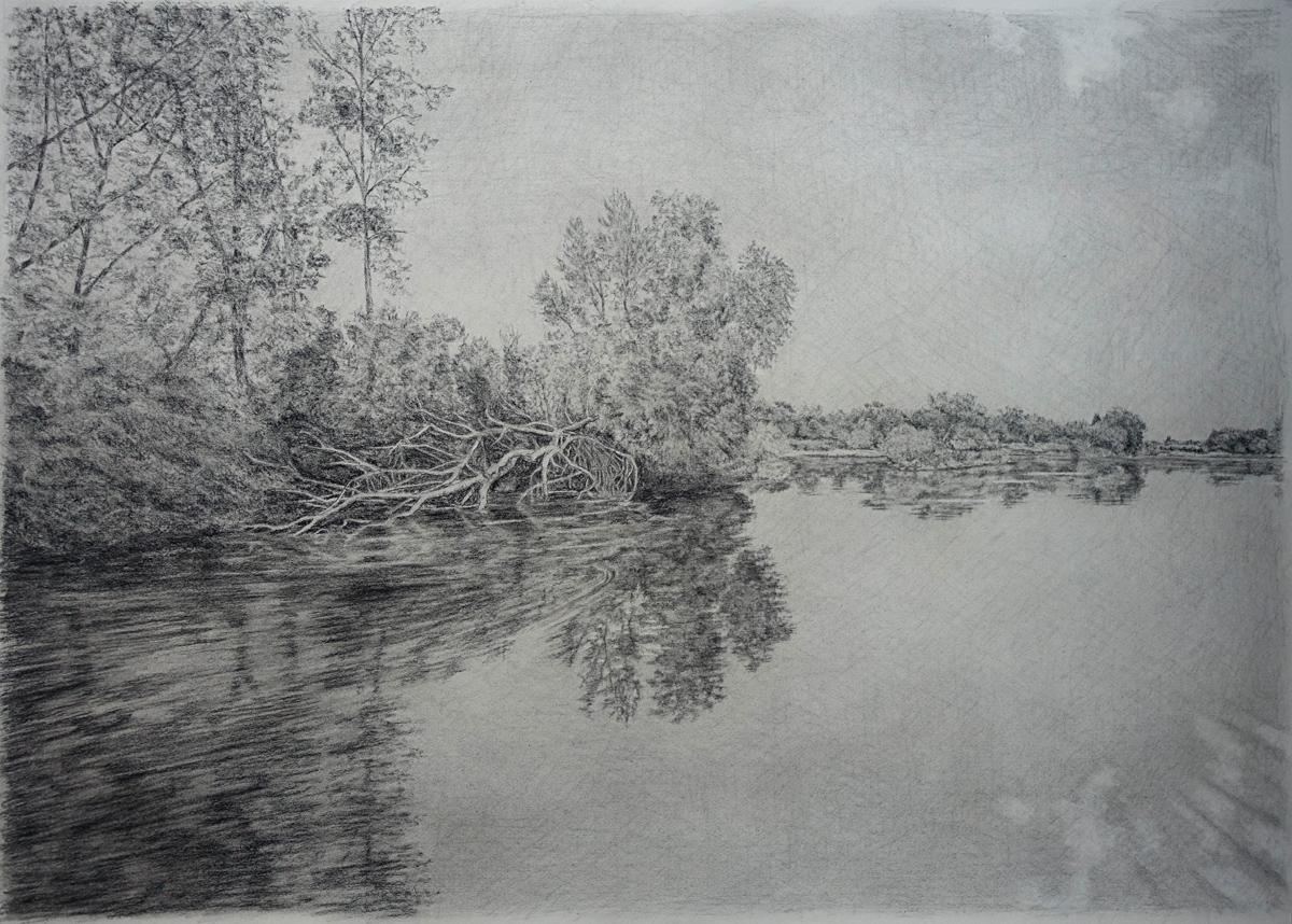 Gilles Blanchard - La Loire à Chouzé (Fusain sur papier - 70 x 100 cm, encadré sous verre) 1 100 €